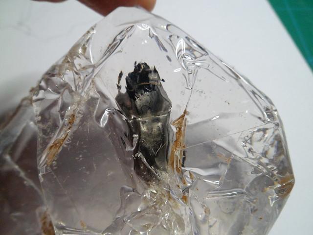 Insecte pris dans la glace 21776847358_c05afb43d2_z