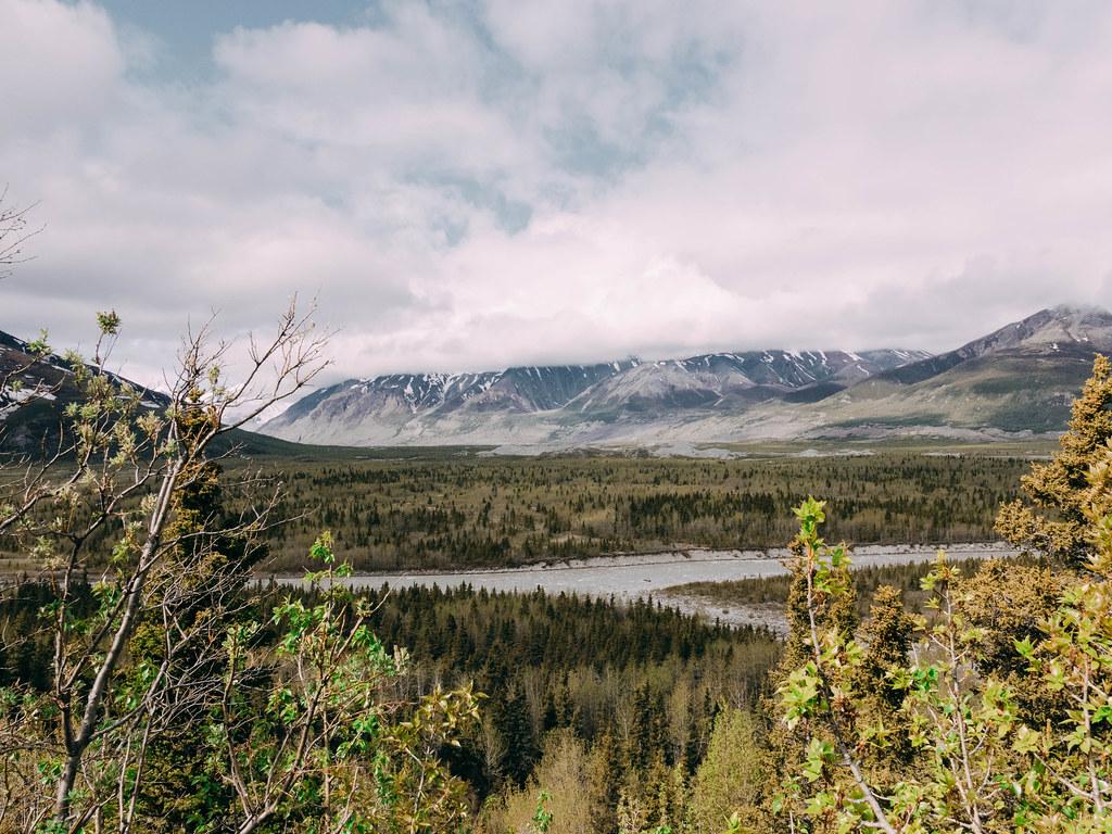 Road to Denali-3
