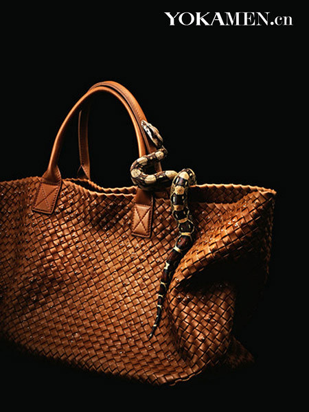 Riveted woven striped variety of your choice snakeskin handbags