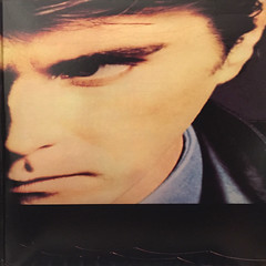 BRYAN FERRY:THE BRIDE STRIPPED BARE(JACKET D)