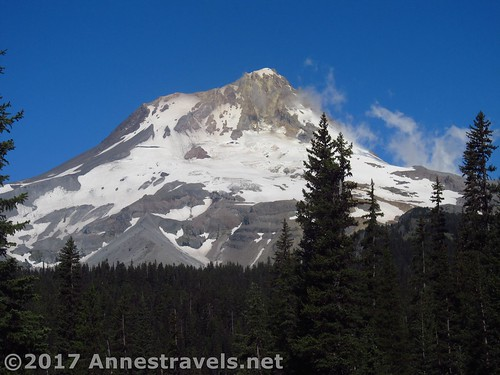 Close up of Mt. Hood from Elk Meadows, Mount Hood National Forest, Oregon