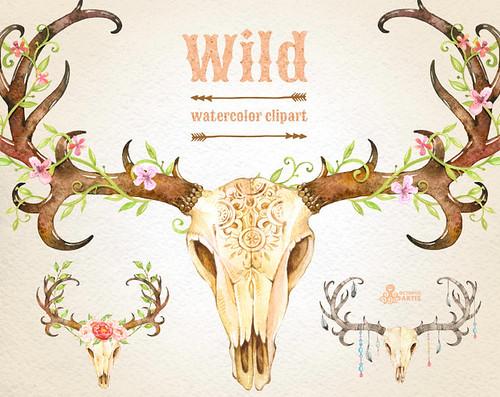 wild 3 watercolor skulls with antlers  hand painted clipa flickr Deer Clip Art Black and White Deer Antlers Clip Art