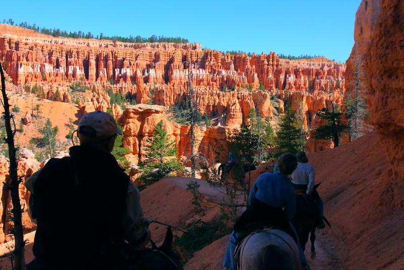 IMG_4855 Mule Ride on Peekaboo Trail