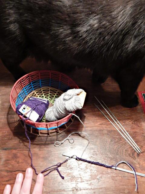 урок - кот мешает набирать петли
