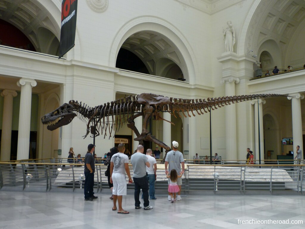 frenchieontheroad.com-sue-trex-fieldmuseum
