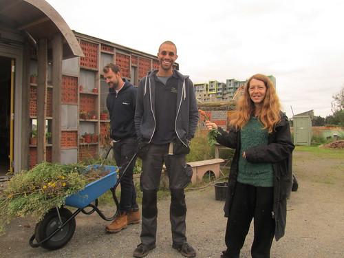 a woman pointing to a man - they are both smiling. Another man is behind them with a wheelbarrow.