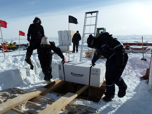 Moving the ice cores up out of the core storage trench to ready them for transport to McMurdo Station. | by U.S. Ice Drilling