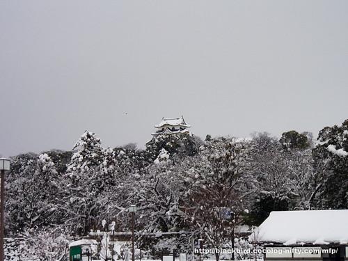Snow Day 2 #01