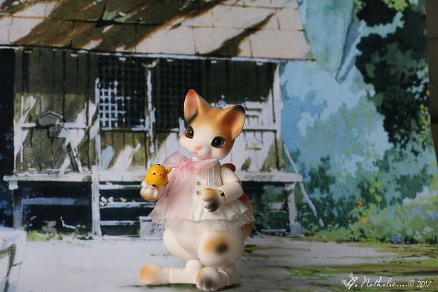 ✰ Ma famille de kitsune (p. 20) - Page 9 32669586491_ca9796541e_z