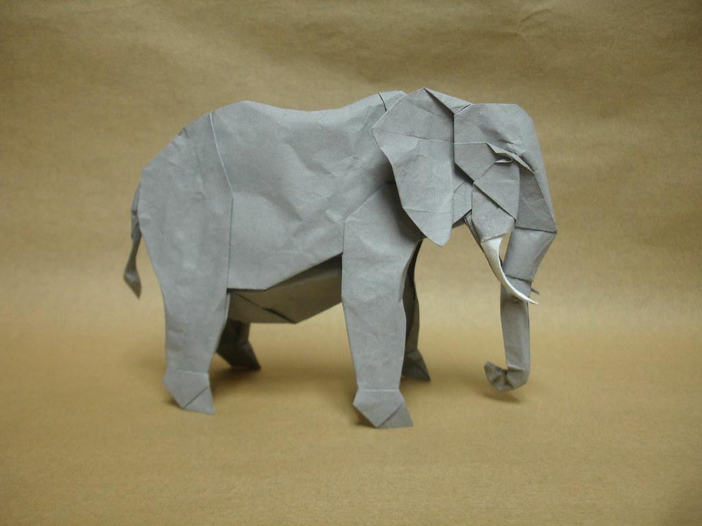 African elephant enlarged the ears slightly not many othe flickr african elephant by shukikato jeuxipadfo Choice Image