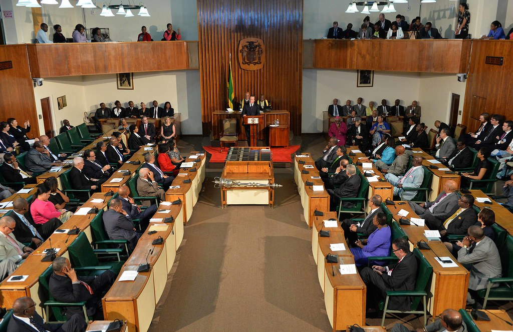 government constitution parliament So parliament (which makes laws and policies) and government departments (which implement policies and programmes) must do so within the rules set by the constitution the role, powers and functions of government are set out in the constitution.