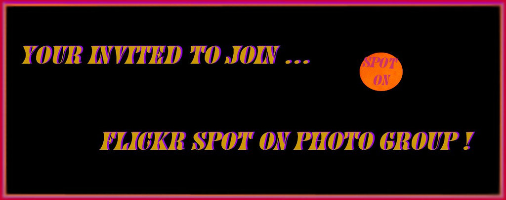 FLICKR SPOT ON PHOTO GROUP