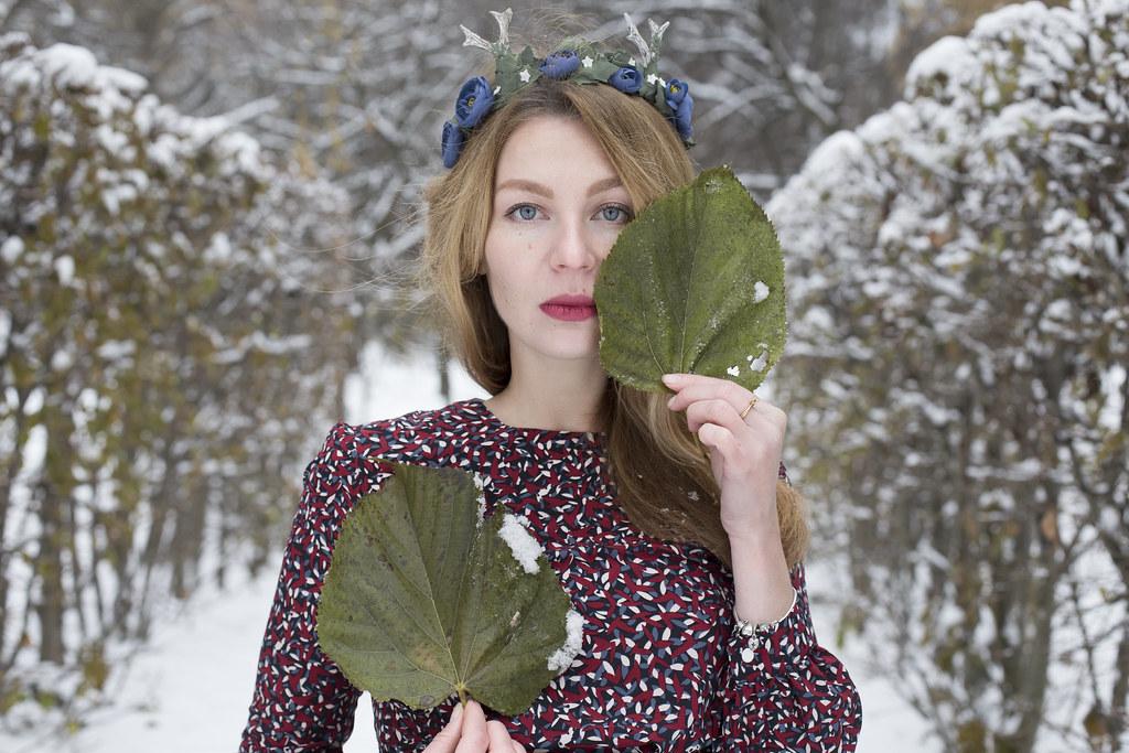 Лесной олень_1