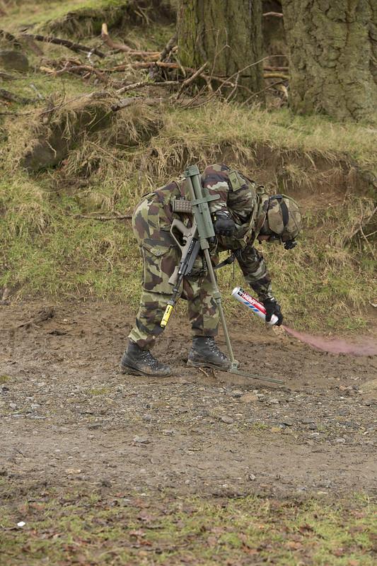 Armée Irlandaise/Irish Armed Forces - Page 2 33150548522_4472f8b62d_c