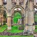 Rievaulx Abbey Archways