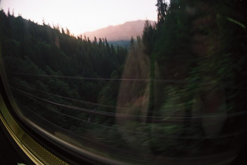 blurry trees, mountain, coast starlight line, amtrak | by cafemama