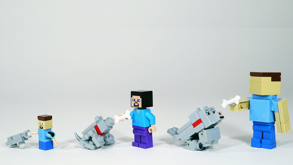 Dog Minecraft Build