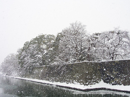 Snow Day 2 #04