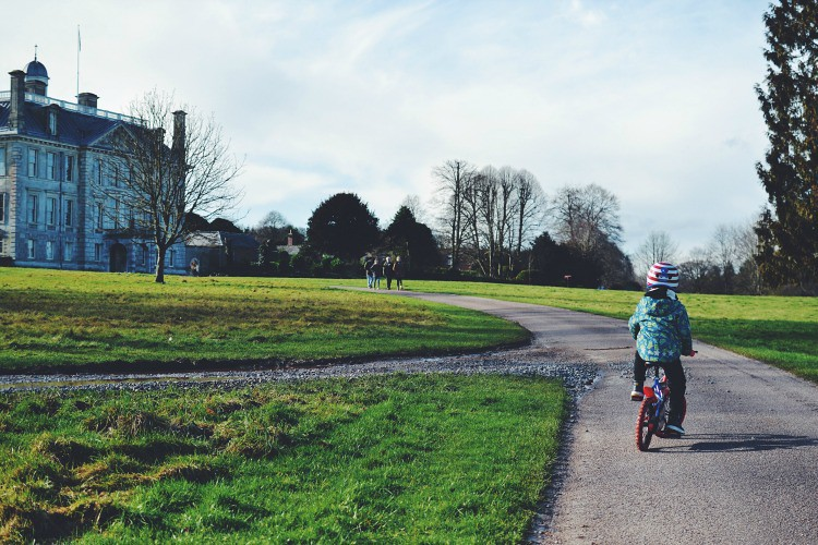 kingston lacy cycling