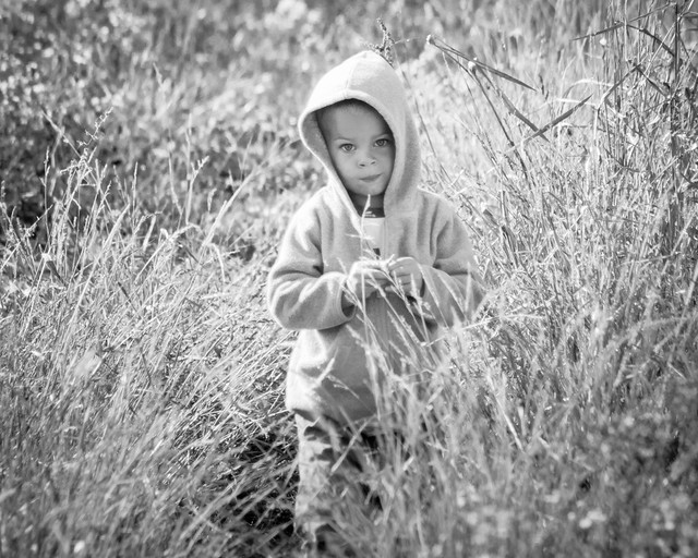 Boy, B&W, Monochrome, Portrait, Child,