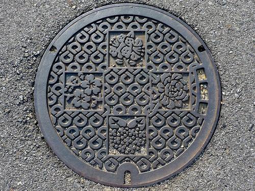 Wakayama pref, manhole cover (和歌山県のマンホール)