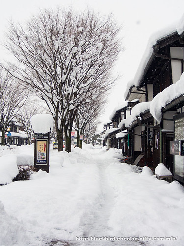 Snow Day 2 #02