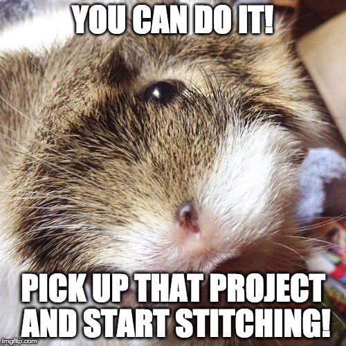you can do it! pick up that project and start stitching!