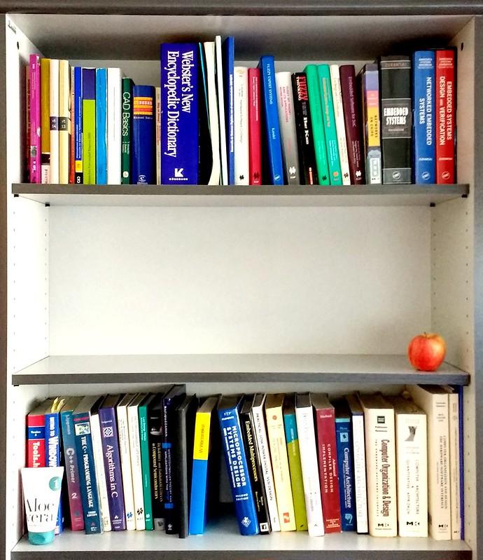 Desorden organizado
