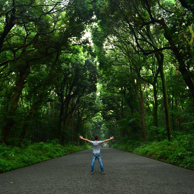 Parque Yoyogi de Tokio