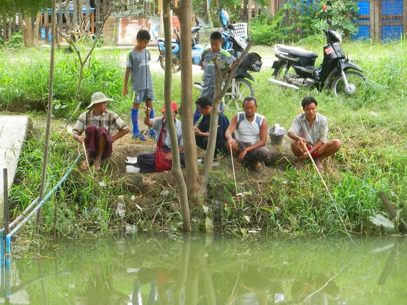 Нуанг Шве, в каналах есть рыба