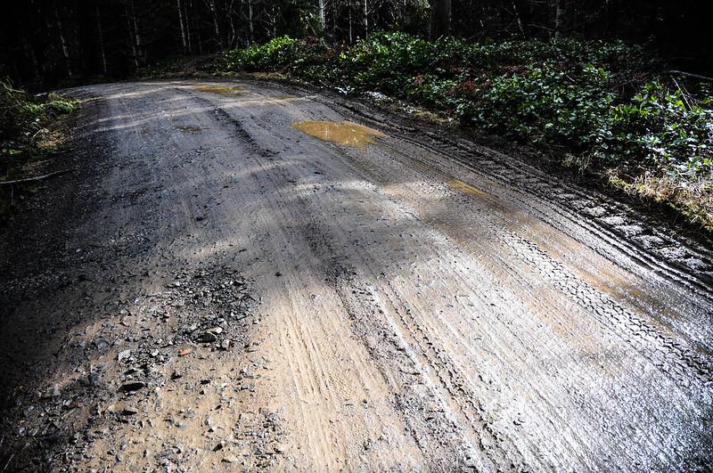 Timber Logjam-33.jpg