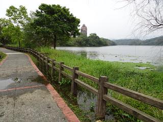 附近的水很高,快和路差不多了