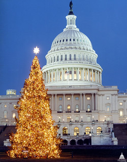1999 U.S. Capitol Christmas Tree | by USCapitol