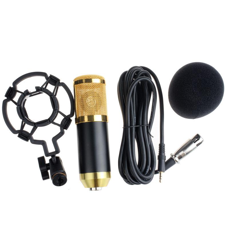 microfon profesional bm 800