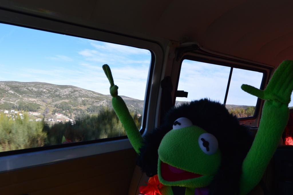 Zirita na Serra da Estrela