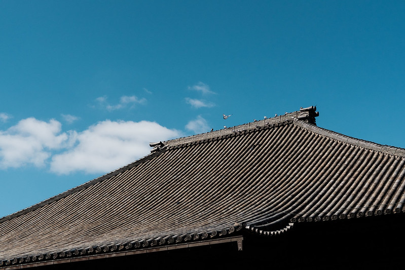 Saidaiji main hall roof