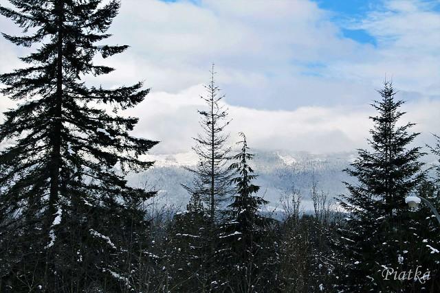 Snowy Beaufort Mountain Range #heartofvancouverisland