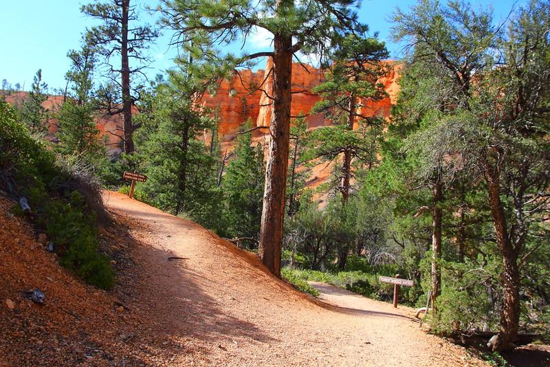 IMG_5275 Fairyland Trail