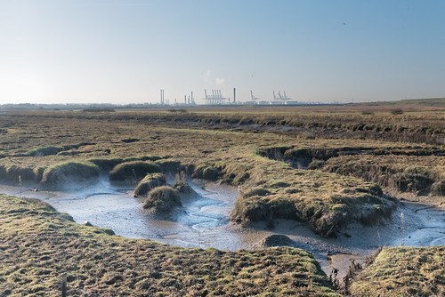 Canvey marshes | by sczscz