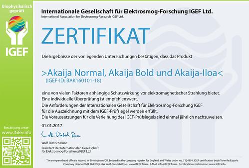 IGEF-Zertifikat-BAK-DE