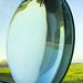 Lens-shaped fishtank