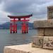 giant torii gate