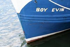 Boy Evin