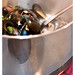 The Mussels of Prince Edward Island