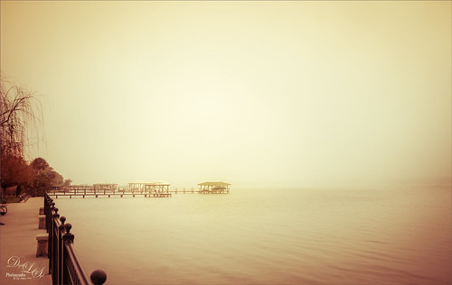 Foggy day on the Halifax River in Ormond Beach, Florida