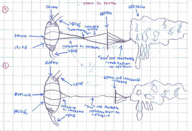 prime idee del funzionamento dell'occhio
