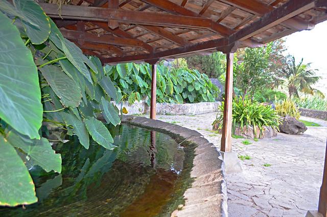 the washing area, Los Lavaderos gardens, El Sauzal, Tenerife