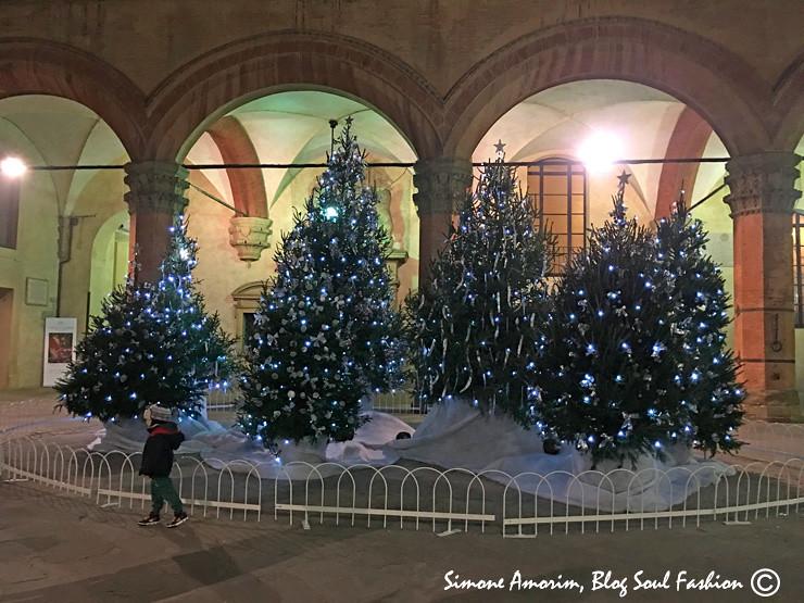 E bem ali perto dentro do Palazzo D'Accursio tem mais árvores.