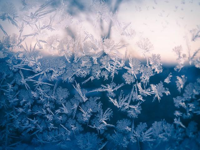 SnowflakesFrostWindow-1050707.jpg,P1050706.jpgSnowflakesonWIndowWInterFrozenSNow,Frost flower, ice crystal, arctic mesh, frost, snowflake.kuurankukka, jääkide, jääkukka, huurre, lumikide, lumihiutale, jäätynyt lumi, jäätynyt ikkuna, frozen window, icy window, jäinen ikkuna, talvi, winter, luonto, nature, helsinki, suomi, finland, kaunis, beautiful, pastel pink snowflakes, pastel pink snow ice, maisema, view, pastellin pinkki ikkuna,