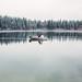 Rowboat Photo Session